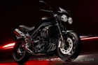 2010-Triumph-Speed-Triple-15th-Anniversary 2