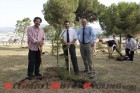 2010-repsol-and-motogp-to-plant-58000-trees 5