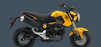 2015 Honda Grom Preview | Hooliganism in Four Colors