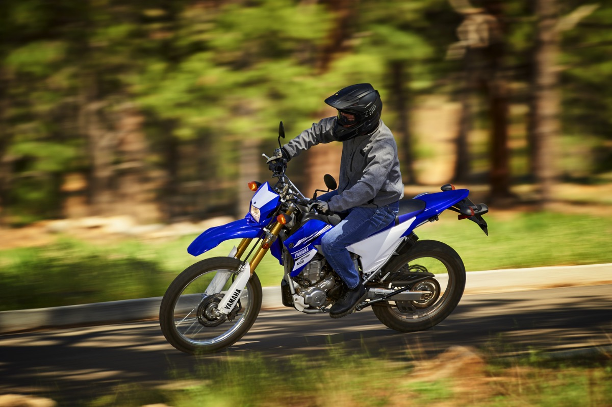 2017 Yamaha WR250R Buyer's Guide | Price & Specs