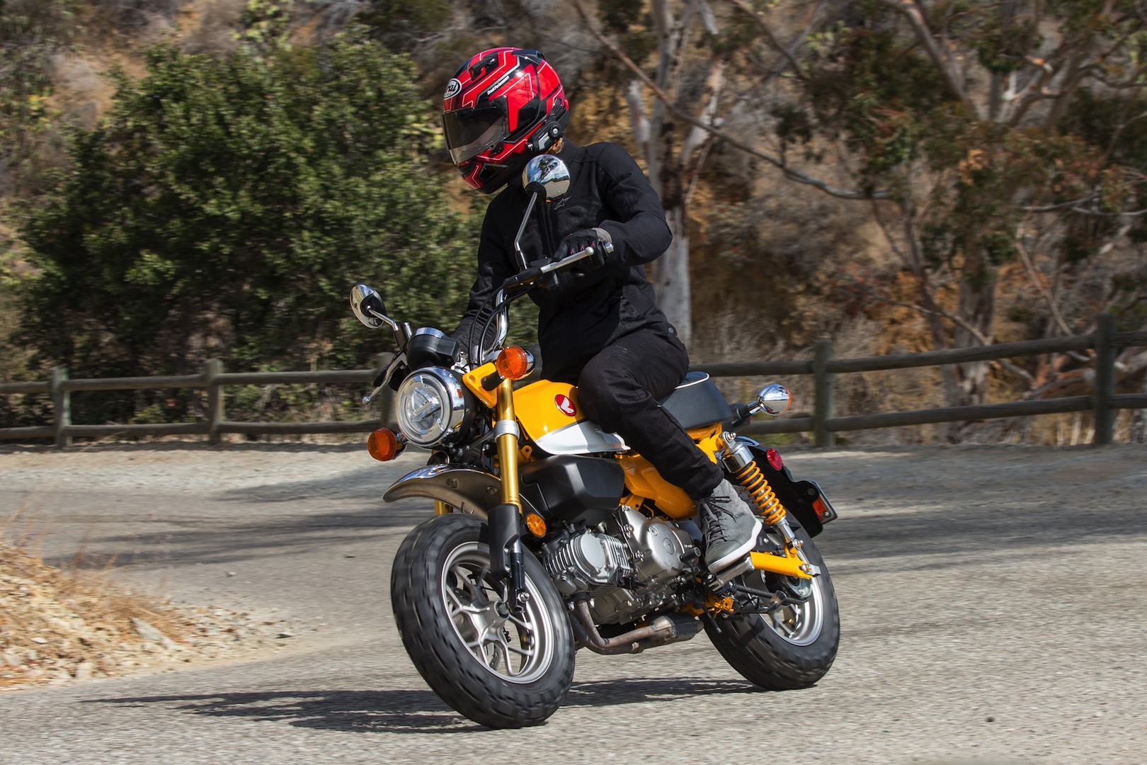 2019 Honda Monkey Review: Hey! Hey! It's The Monkey! (14 ...