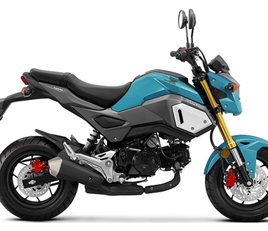 2019 Honda Grom Buyer's Guide: Specs & Price