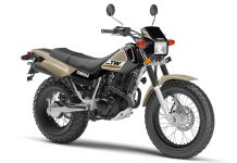 2020 Yamaha TW200 for sale